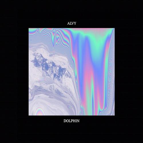 alvy_dolphin